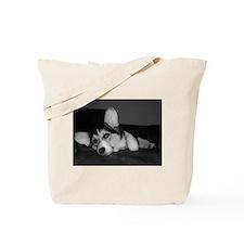 Tri Pembroke Corgi. . .Reflec Tote Bag