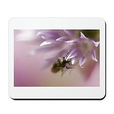 Pink Bee Mousepad