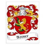 Astner Family Crest Small Poster