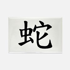 Snake Chinese Character Rectangle Magnet