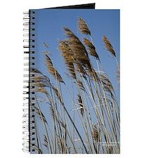 Cape Cod Wheat Journal
