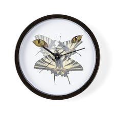 Swallowtail and Cats Eyes Wall Clock