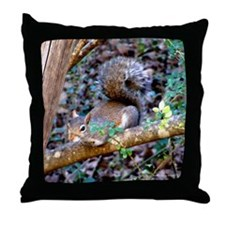Squirrel Resting Throw Pillow