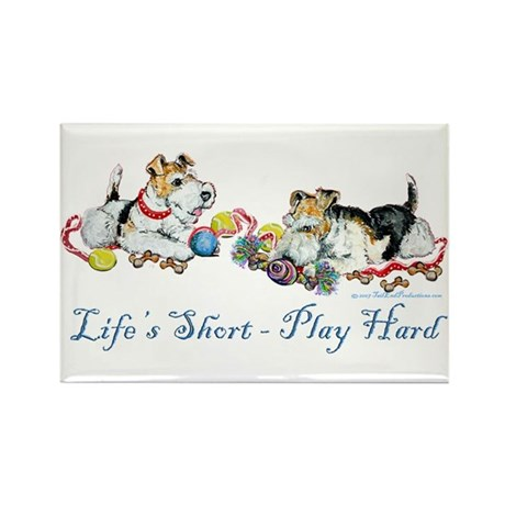 Fox Terriers Dog Play Rectangle Magnet