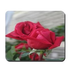 A001-RED ROSE Mousepad