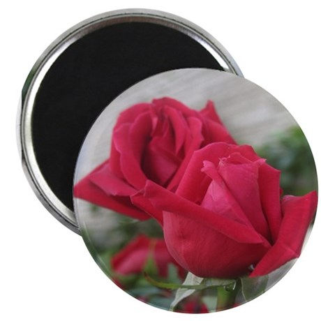 A001-RED ROSE Magnet