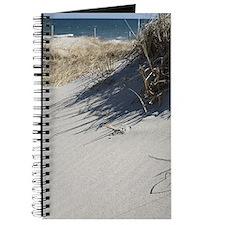 Cape Code Dunes Journal