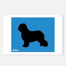 Schapendoes iPet Postcards (Package of 8)