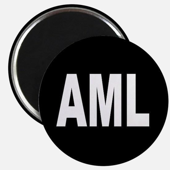 AML Magnet