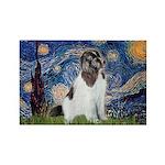 Starry Night / Landseer Rectangle Magnet (10 pack)