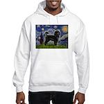 Starry Night / PWD (#2) Hooded Sweatshirt
