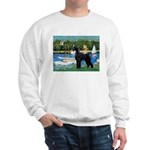 SCHNAUZER & SAILBOATS Sweatshirt
