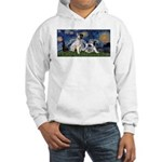 Starry Night / Min Schnauzer Hooded Sweatshirt