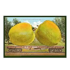 Giant Bellflower Apple Postcards (Package of 8)