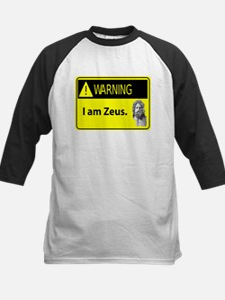 Warning: I Am Zeus Kids Baseball Jersey