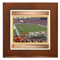 Cotton Bowl #2 Framed Tile