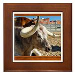 Longhorn #7 Framed Tile