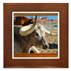 Longhorn #7 Framed Tile