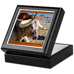 Longhorn #7 Keepsake Box