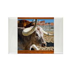 Longhorn #7 Rectangle Magnet