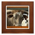 Longhorn #6 Framed Tile