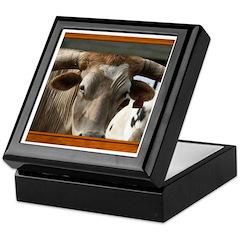 Longhorn #6 Keepsake Box