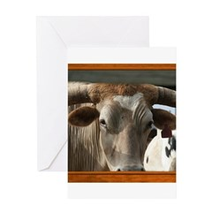 Longhorn #6 Greeting Card