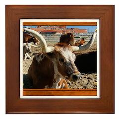 Longhorn #5 Framed Tile
