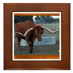 Longhorn #4 Framed Tile