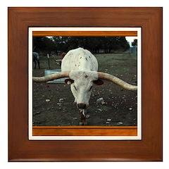 Longhorn #3 Framed Tile
