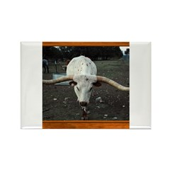 Longhorn #3 Rectangle Magnet
