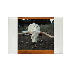 Longhorn #3 Rectangle Magnet