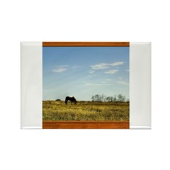 Horse #1 Rectangle Magnet