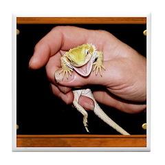 Horned Toad Tile Coaster
