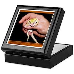 Horned Toad Keepsake Box