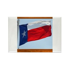 State Flag #3 Rectangle Magnet