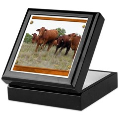 Cattle Keepsake Box