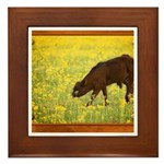 Calf Framed Tile