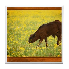 Calf Tile Coaster