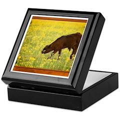 Calf Keepsake Box