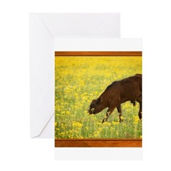 Calf Greeting Card