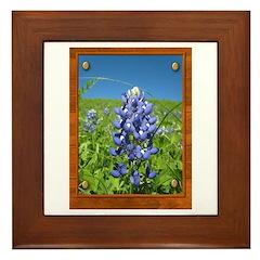 Blue Bonnets Framed Tile