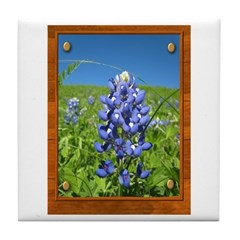 Blue Bonnets Tile Coaster