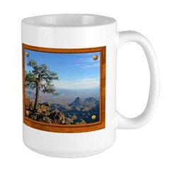 Big Bend Country Mug