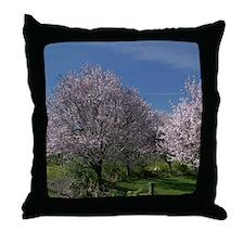 Sonoma Pinks Throw Pillow