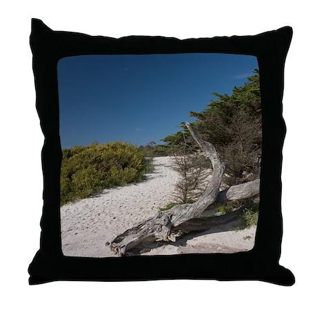 Carmel Beach Throw Pillow