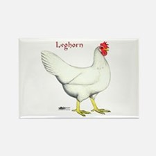 Leghorn White Hen Rectangle Magnet