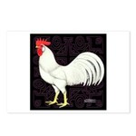 Leghorn Rooster Postcards (Package of 8)
