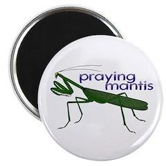 Praying Mantis 2.25