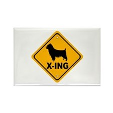 Silky X-ing Rectangle Magnet (100 pack)